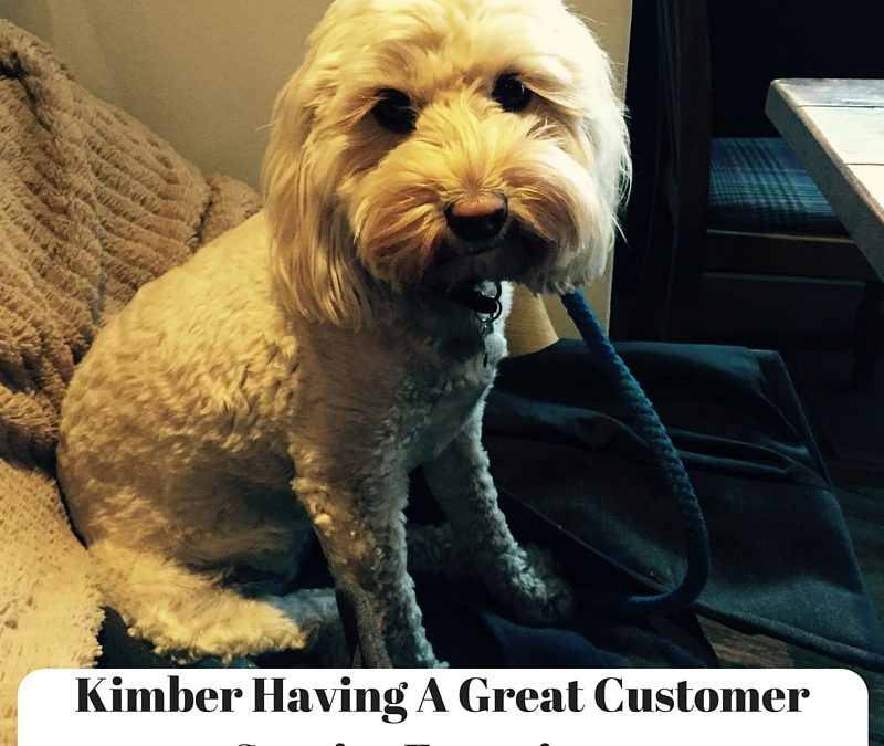 How To Create A Great Customer Service Experience