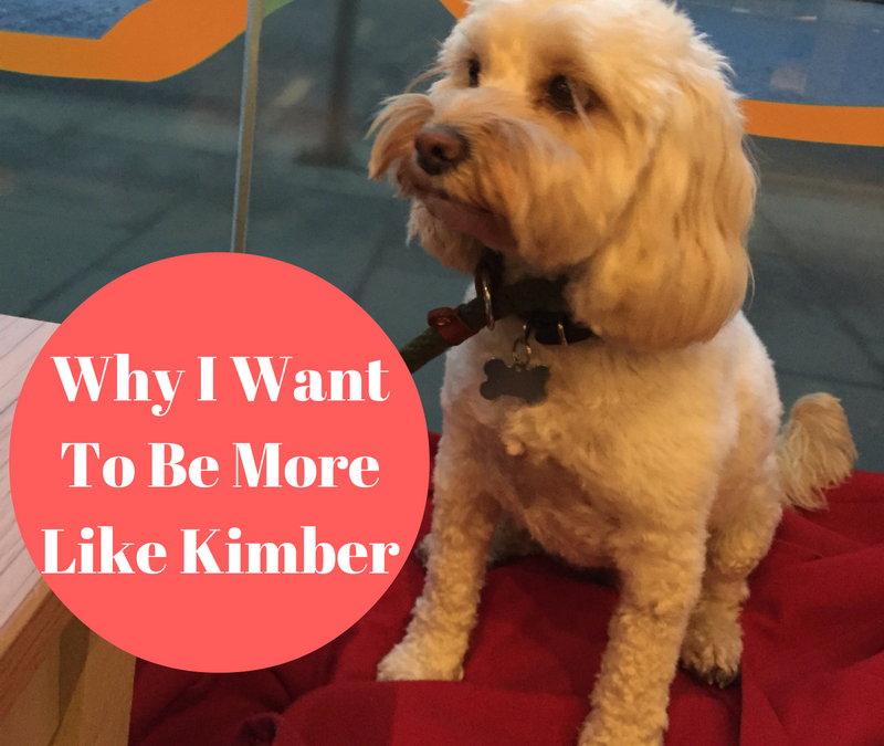 Why I'm Trying To Be More Like Kimber