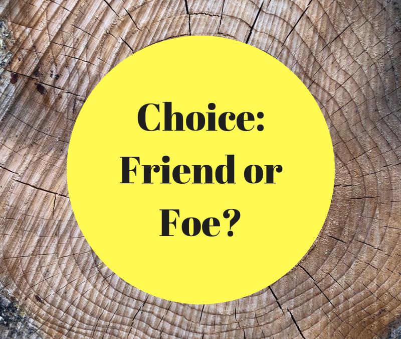 Choice: Friend or Foe?